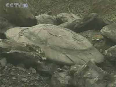 中国煤矿挖出UFO化石 外星人曾造