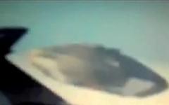 看这视频你还会否认UFO吗?