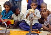 揭秘印度瑜伽修行者舞