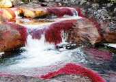 地球上15条最壮美河流