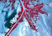 壮丽地球卫星照揭人类