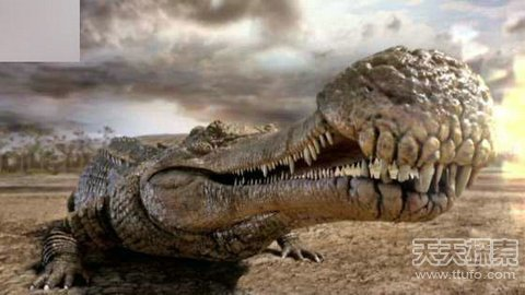 恐龙来袭!复活17种可怕的史前生物